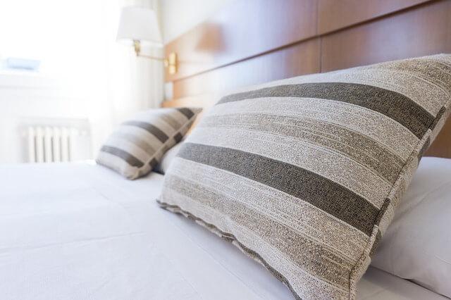 silberfische im schlafzimmer bett bek mpfen tipps mittel 2018. Black Bedroom Furniture Sets. Home Design Ideas