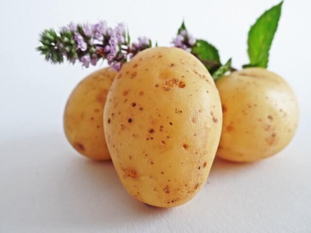 Hausmittel silberfische kartoffel