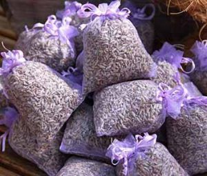 Lavendel gegen Silberfische
